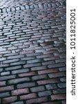 cobblestone pavement on a... | Shutterstock . vector #1011825001