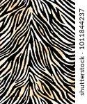 zebra skin background | Shutterstock .eps vector #1011844237