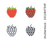 raspberry flat outlined solid... | Shutterstock .eps vector #1011847549