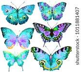 beautiful butterflies  set... | Shutterstock . vector #1011881407