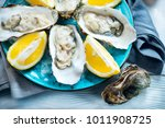 fresh oysters close up on blue...   Shutterstock . vector #1011908725
