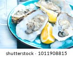 fresh oysters close up on blue...   Shutterstock . vector #1011908815