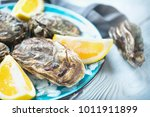 fresh oysters close up on blue...   Shutterstock . vector #1011911899
