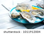 fresh oysters close up on blue... | Shutterstock . vector #1011912004