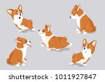 Stock vector cute corgi dog puppies isolated hand drawn vector illustration perfect as kid s room wall art 1011927847