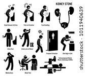 kidney stone icons. pictogram... | Shutterstock . vector #1011940639