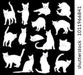 pretty cat illustration  i made ... | Shutterstock .eps vector #1011966841