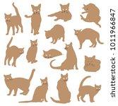 pretty cat illustration  i made ... | Shutterstock .eps vector #1011966847