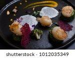 molecular gourmet cuisine... | Shutterstock . vector #1012035349