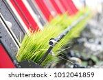 rice planting machine.... | Shutterstock . vector #1012041859