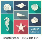 silhouettes of sea shells ... | Shutterstock .eps vector #1012105114