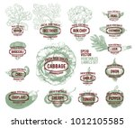 collection of hand drawn...   Shutterstock .eps vector #1012105585