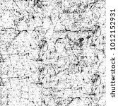 chaotic grunge ink particles.... | Shutterstock . vector #1012152931