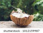 coconut fruit and milk splash... | Shutterstock . vector #1012159987