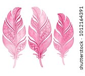 beautiful hand drawn feather... | Shutterstock .eps vector #1012164391