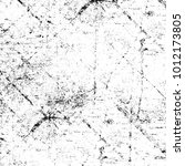 chaotic grunge ink particles.... | Shutterstock . vector #1012173805