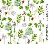watercolor seamless pattern on... | Shutterstock . vector #1012177741
