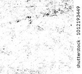 chaotic grunge ink particles.... | Shutterstock . vector #1012193449