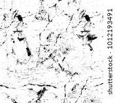 chaotic grunge ink particles.... | Shutterstock . vector #1012193491