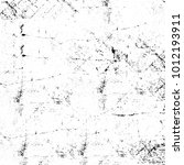 chaotic grunge ink particles.... | Shutterstock . vector #1012193911