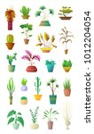 cartoon style collection plants ... | Shutterstock .eps vector #1012204054