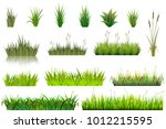 grass vector grassland or... | Shutterstock .eps vector #1012215595