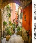 narrow alleyway between... | Shutterstock . vector #1012220245