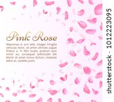 pink rose or sakura falling... | Shutterstock .eps vector #1012223095