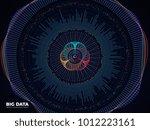 big data graphic  complex... | Shutterstock .eps vector #1012223161