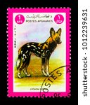 Small photo of MOSCOW, RUSSIA - DECEMBER 21, 2017: A stamp printed in Afghanistan shows African Wild Dog (Lycaon pictus), Animals serie, circa 1984