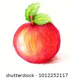 Drawing Of Apple. Watercolor...