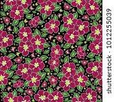 illustration of seamless floral ... | Shutterstock . vector #1012255039