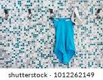 pisa italy   01 29 2018  a blue ... | Shutterstock . vector #1012262149