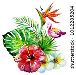 beautiful tropical palm leaves... | Shutterstock . vector #1012285204
