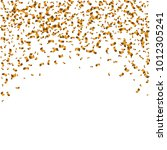 gold  confetti on white... | Shutterstock .eps vector #1012305241