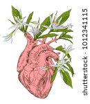 human heart with flowers   Shutterstock .eps vector #1012341115