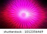 dark pink vector template with... | Shutterstock .eps vector #1012356469