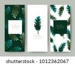 branding packaging leaf nature... | Shutterstock .eps vector #1012362067