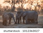 a horizontal  colour photo of a ... | Shutterstock . vector #1012363027
