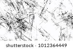 halftone grunge dotted strokes... | Shutterstock .eps vector #1012364449