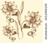 dahlia is a flower and a bud.... | Shutterstock . vector #1012404145