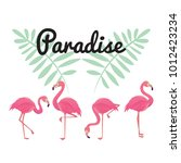 flamingo bird illustration... | Shutterstock .eps vector #1012423234