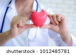 pink heart in the hands of the... | Shutterstock . vector #1012485781