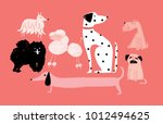 Stock vector illustration of dogs vector 1012494625