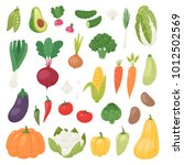 vegetables vector healthy... | Shutterstock .eps vector #1012502569