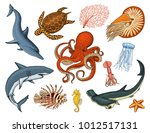 fishes set or sea creature... | Shutterstock .eps vector #1012517131