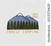 coniferous forest  mountains... | Shutterstock .eps vector #1012574629