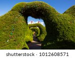 beautiful evergreen landmark... | Shutterstock . vector #1012608571