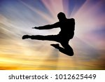 silhouette of a man flying kick ... | Shutterstock . vector #1012625449