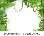 realistic tropical leaves frame ... | Shutterstock .eps vector #1012629757